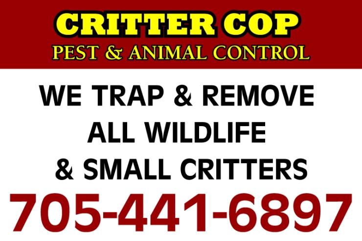 CritterCopSign-small.jpg